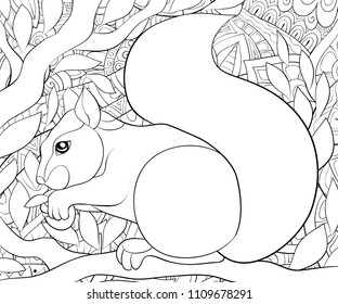 Adult Coloring Bookpage A Cute Squirrel On The Brunch For RelaxingZen Art