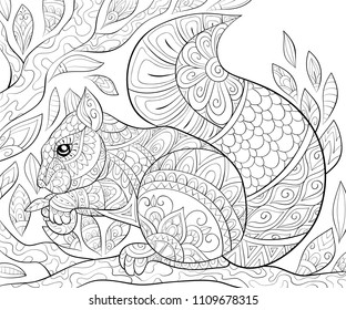 Squirrel Coloring Pages Images Stock Photos Amp Vectors