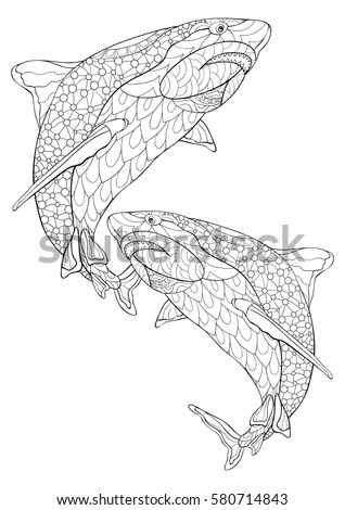 Adult Coloring Bookshark Freehand Sketch Adult Stock Vector (Royalty ...