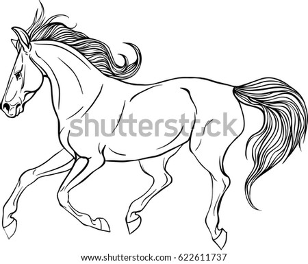 Adult Coloring Page Antistress Art Therapy Stock Vector Royalty