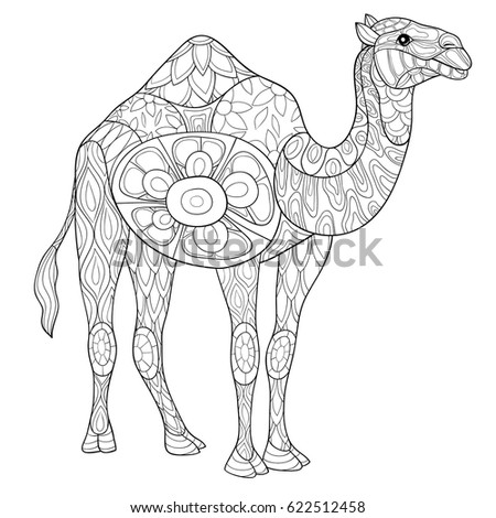 Adult Coloring Page Camel Art Style Stock Vector Royalty Free