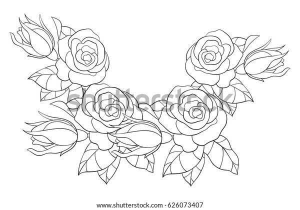 Adult Coloring Page Flowers Leaves Aa Stock Vector (Royalty ...