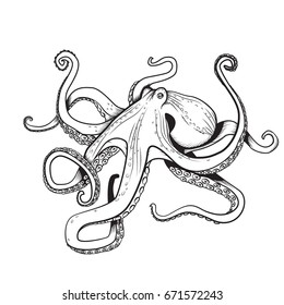 Adult coloring page Octopus illustration