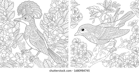 Adult coloring pages. Beautiful birds in the spring garden. Line art design for antistress colouring book in zentangle style. Vector illustration.  - Shutterstock ID 1680984745