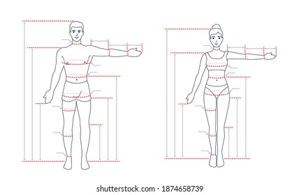 An adult human body size chart. Measurements for tailoring clothes. A measure of a man, a woman. People standing in a full length with one arm spread out. A vector outline contour illustration.