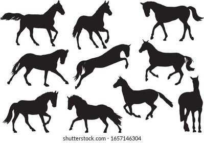 Adult race horses silhouettes. Clip art black and white