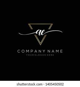 AE handwriting initial  logo template vector.