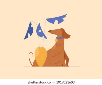 Afghan hound, sitting, side view. Vector flat cartoon illustration, composition with house plant