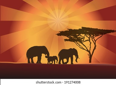 Africa elephants silhouette with tree and orange sun, vector illustration