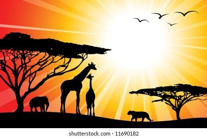 Africa / safari - silhouettes of wild animals in twilight
