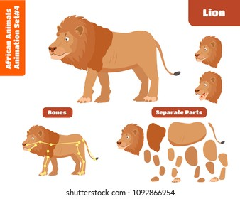 African Animal Lion For Animation Set. Cartoon Style Vector Illustration