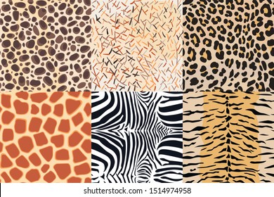 African animal skin collection. Seamless pattern, fashionable textile print, vector wallpaper.