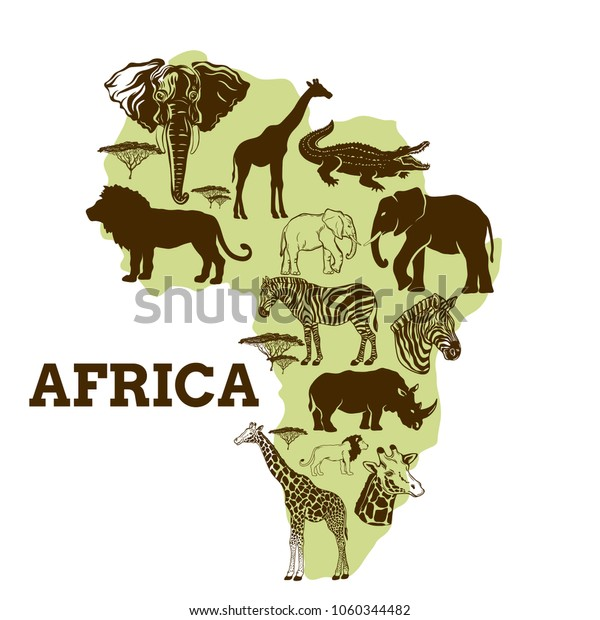 African Animals Collectionvector Illustration Stock Vector ...