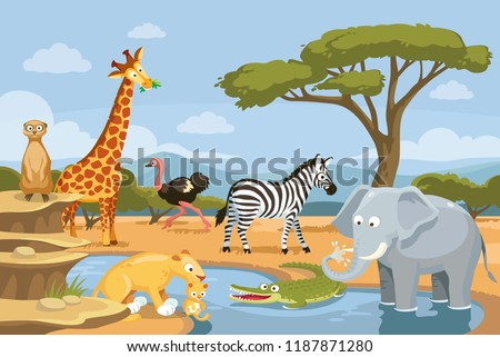 African animals in the