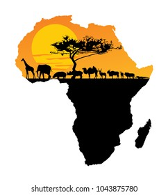African animals over map of Africa. Safari sunset. Savanna wildlife animals. Big five under acacia tree. Travel invitation card for Africa nature.
