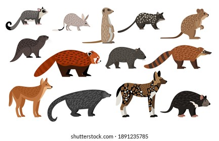 African animals set. Cartoon sugar glider, bilby quoll quokka otter red panda binturong coati dingo zoo creatures, wildlife characters collection isolated