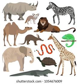 African animals set. Elephant, giraffe, rhino, lion, crocodile, zebra, rhinoceros, camel snake tortoise desert Fennec fox chameleon aardvark Flat Vector illustration