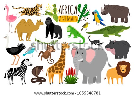 African Animals Various Wildlife Animals Africa Stock Vector