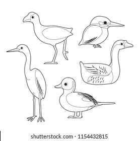 Cartoon Kingfisher Images Stock Photos Vectors Shutterstock