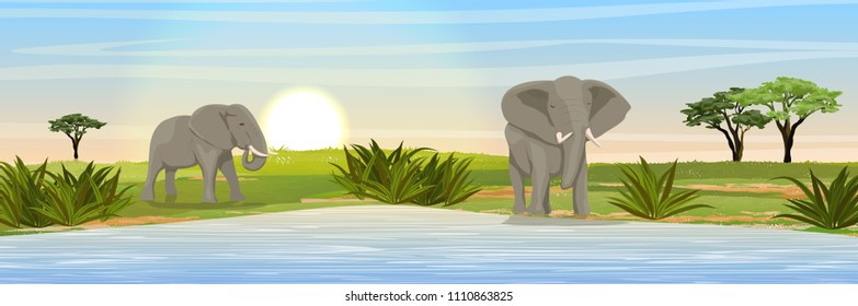 African elephants at the watering hole. Grass, a large lake, doum palm on the horizon. Realistic vector landscape. Nature and animals of Africa. Reserves and national parks.
