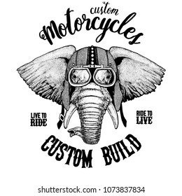 African or indian Elephant Biker, motorcycle animal. Hand drawn image for tattoo, emblem, badge, logo, patch, t-shirt