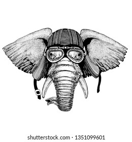 African or indian Elephant wild biker animal wearing motorcycle helmet. Hand drawn image for tattoo, emblem, badge, logo, patch, t-shirt.