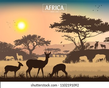 African landscape. Grass, trees, birds, animals silhouettes. Abstract nature background. Template for your design works. Vector illustration.
