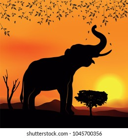 African landscape sunset with elephant and tree