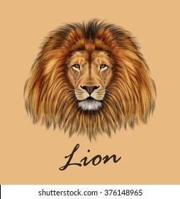 African Lion. Vector Illustrated portrait of Lion on tan background.