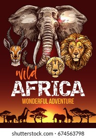 African safari poster with wild animals. Elephant, giraffe, lion, leopard and antelope sketch animal on sunset sky background with savannah landscape. Travel, tourism, african safari themes design