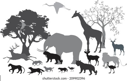 African savannah and differnt animals silhouettes