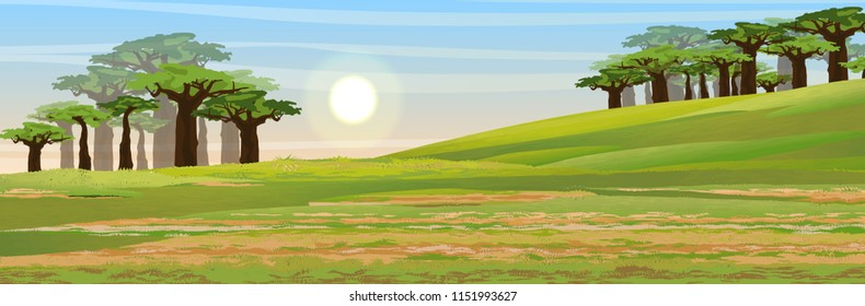 African savannah. Hill and valley. Grass, baobab grove. Realistic vector landscape. The nature of Africa. Reserves and national parks.