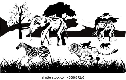 Hand Drawn Lion Stock Images Royalty Free Images & Vectors Shutterstock