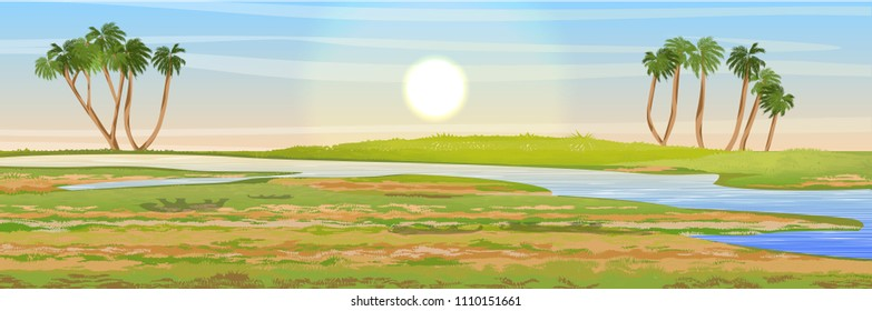 African savannah. The river valley, watering place. Doum palm trees. Realistic vector landscape. The nature of Africa. Reserves and national parks.