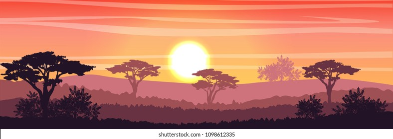African Savannah at sunset. Acacia trees, grass, sky, sun and clouds. Realistic vector landscape. The nature of Africa. Reserves and national parks.