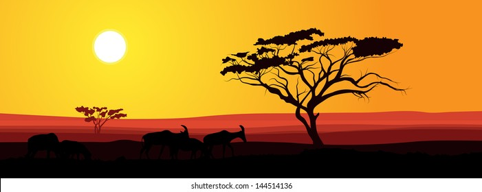 African Sunset Images Stock Photos Vectors Shutterstock