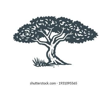 African tree. Vector illustration. Monochrome version.