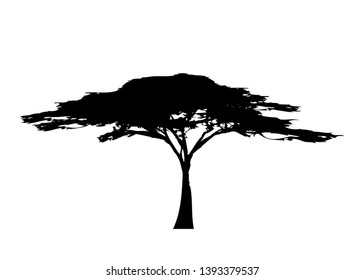 African tropical tree logo icon black and white color, acacia tree silhouette, green nature safari ecology concept, biological concept nature preservation trust, vector isolated on white background
