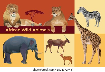 African wild animals: lions, zebra, antelopes, elephant and giraffe. Vector illustration isolated on colorful background