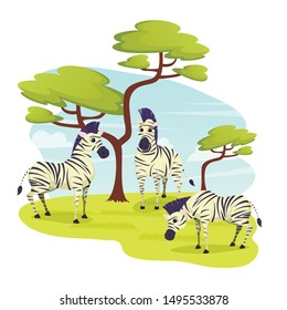 African Wild Zebras Herd Grazing in Grasslands, Horse Family with Distinctive Black and white Striped Coats. Herbivorous Animals Living in Africa, Zoo Park, Wildlife, Cartoon Flat Vector Illustration