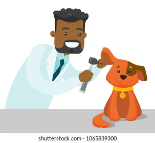 African-american veterinarian doctor examining the dog in the hospital. Veterinarian checking the ear of dog with otoscope at vet clinic. Concept of medicine and pet care. Vector cartoon illustration.