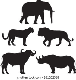 Africa's Big Five Animals: Elephant, Lion, Leopard, Buffalo and Rhino