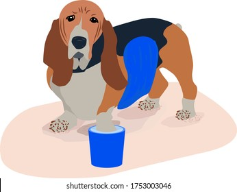 After a walk in the fresh air my legs their Pets. the dog willingly gives paws and belly to wash them from dirt and dust.