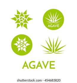 Agave plant green flower logo colorful vector illustration, symbol set