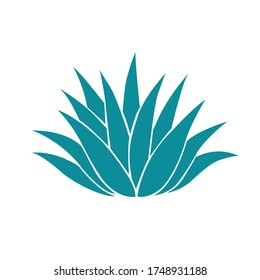 Agave plant isolated on white background.illustration vector,Tequila logo.
