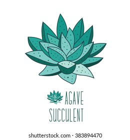 Agave plant isolated on white background. Hand drawn flower. Succulent flower icon, logo. Agave succulent hand drawn text. Teal color. Flat design. Mod fabric print. Stock vector illustration