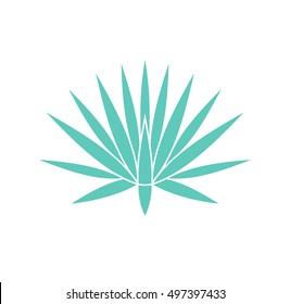 Agave plant. Vector illustration EPS