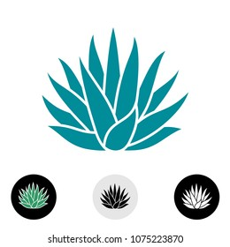 Agave plant vector silhouette. Blue agave cactus illustration. Tequila logo.