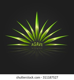 Agave vector design template