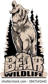 Aggressive, angry bear emblem logo. Design for t-shirts. Vector image.